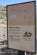 Image for Mule Ears Peaks - Big Bend NP TX