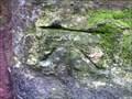 Image for Cut Benchmark on Town Walls in Shrewsbury, Shropshire
