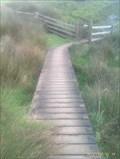 Image for Boardwalk, SW Coastpath - Beeny, Nr Boscastle, Cornwall