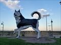 Image for Florence Huskies - Florence, CO