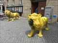 Image for Two yellow lions - Amberg, Germany