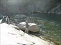 Image for Elk River and Falls - Elk Park, NC