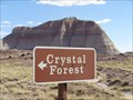 Image for Crystal Forest - Petrified Forest National Park, Arizona, USA.