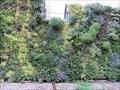 Image for Green walls create new urban jungles - London, U.K.