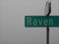 Image for G-DAUG of biscuitt bunch finds her name Raven