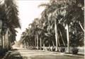 Image for McGregor Boulevard, Fort Myers, Florida