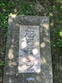 Image for Unknown - Old Bethal Cemetery - Jackson, MO.