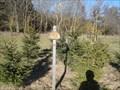Image for Arboretum Bondorf, Germany, BW