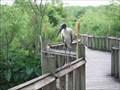Image for Gatorland Breeding Marsh and Bird Sanctuary - Orlando, FL