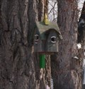 Image for Bird House Tree - North Tonawanda, New York