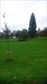 Image for Kendal Green - Kendal