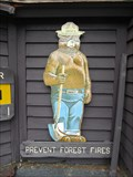Image for Erving State Forest Smokey Bear - Erving, MA