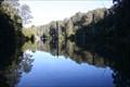 Image for Lake Elizabeth, Otway Ranges, Victoria, Australia