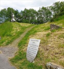 Llywelyn ap Gruffydd Fychan