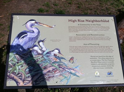 High Rise Neighborhood Sign, Vasona Park, Los Gatos, CA
