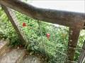 Image for Love Padlocks - Rhine Falls, Switzerland