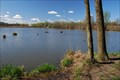 Image for PR Rezavka / Rezavka Nature Reserve, CZ