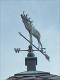 Image for Moose Weathervane - Lake Buena Vista, FL