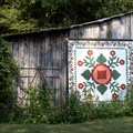 Image for Confederate Rose at Hopalong Hollow Barn-Rutledge,TN