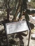Image for Wortz Demonstration Garden - Palm Desert, CA