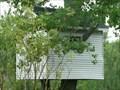 Image for Tree house - Brunkild MB