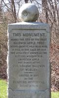 Image for Baldwin Apple Monument