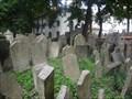 Image for Starý židovský hrbitov - Old Jewish Cemetery (Praha, CZ)