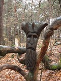 Image for The wood thief in the Palatinate Forest - RLP / Germany