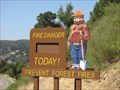 Image for Smokey Bear - Lexington Reservoir, Santa Clara County