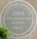 Image for Franklin, Gosling, Stokes, Wilkins & Wilson - King's College, Strand, London, UK