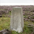 Image for O.S. Triangulation Pillar - Goyle Hill, Aberdeenshire.