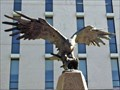 Image for Korean War Memorial Eagle - Austin, TX