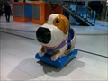 Image for Dog in Polus city center - Bratislava Slovakia