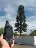 Image for Pine Tree Tower - Tempe, AZ