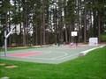 Image for Pine Lake Park Court