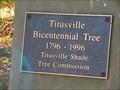 Image for Bicentennial Tree - Titusville, PA