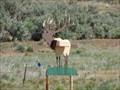 Image for Elk on '89