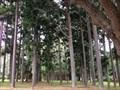Image for Rockhampton Botanical Gardens
