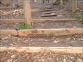 Image for Cox Mountain Trail Improvement, Eno River State Park, North Carolina