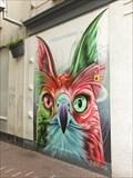 Image for Colorful Owl - Arnhem, Netherlands