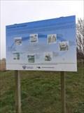 Image for Paaiplaats voor snoeken - Hoek van Holland, the Netherlands