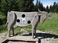 Image for Cow - Seealpe, Germany, BY