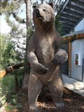 Image for Grizzly Bear Statue - Cheyenne Mountain Zoo - Colorado Springs, CO