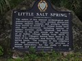 Image for Little Salt Springs - North Port, FL
