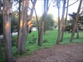 Image for Sutro Heights Park - San Francisco, CA