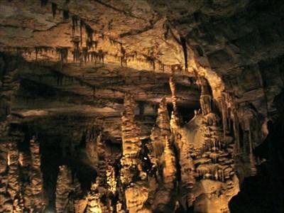 stalagmite forest