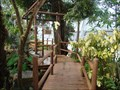 Image for Myriad Botanical Garden and Crystal Bridge Tropical Conservatory - Oklahoma City, OK