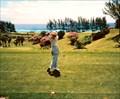 Image for Golfing in Bermuda
