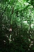 Image for TB 3420-9 Na brde