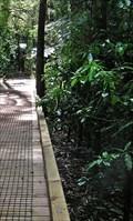 Image for Jubilee Bush Park Boardwalk, Hamilton. North Is. New Zealand.